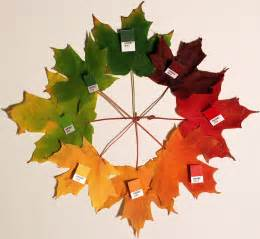 leaf colors uwl website