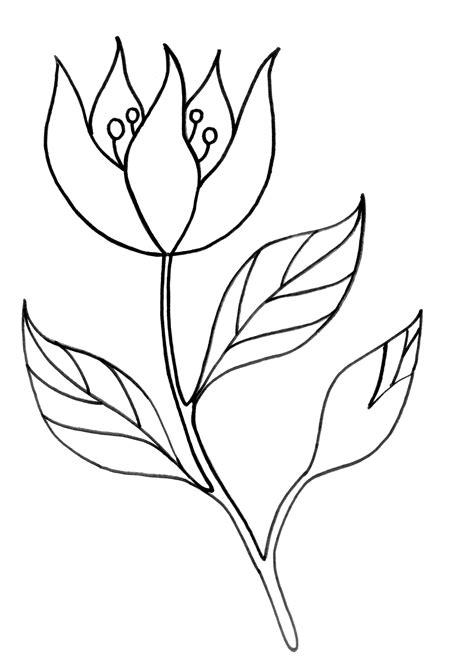 dibujos realistas para colorear dibujos hermosos para colorear y pintar