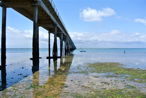 de mocambique tudo sobre a ilha de mo 231 ambique blog e dicas de viagem