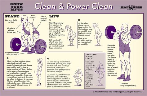 how to clean in how to clean and how to power clean know your lifts