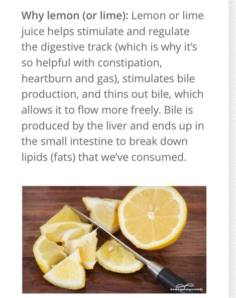 Make Your Own Detox Drink For Test by How To Make Your Own Detox Drink Musely