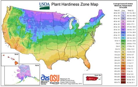 planting zone map hardiness zones heat zones and sunset climate zones temperate climate permaculture