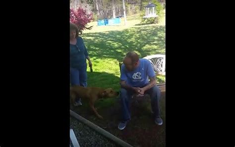 doesn t recognize owner doesn t recognize owner after dramatic weight loss until he sniffs him
