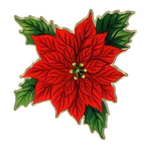 imagenes flores de navidad flor de navidad imagui