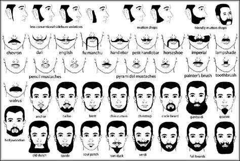 mens hairstyles different types of beards various styles names of facial hair styles you need to know