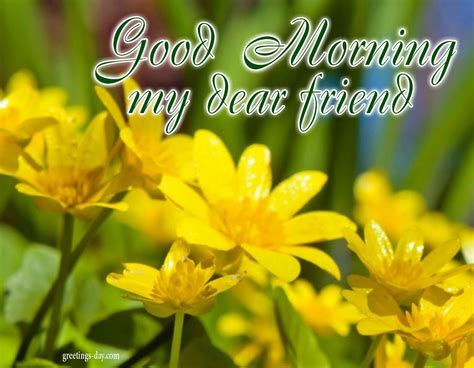 good morning daily pictures animated pics wishes