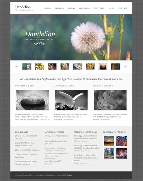 layout wordpress portfolio dandelion powerful elegant wordpress theme by pexeto