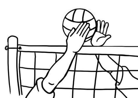 clipart pallavolo clipart awesome and free court