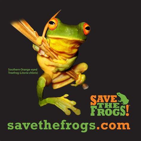 Bjeff Frog Handmade beautiful shirts for frog custom ink fundraising
