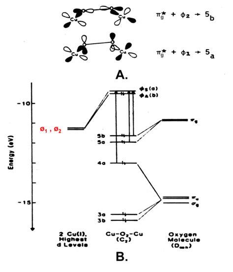 orbital diagram for copper orbital diagram cu asdn copper proteins for biofuel