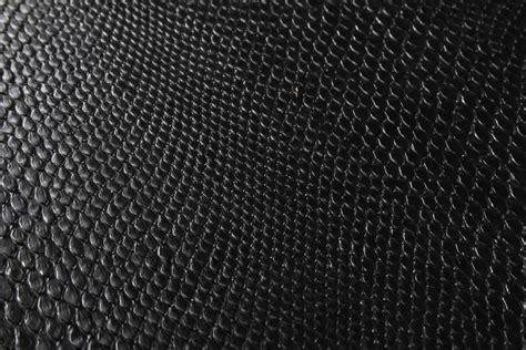 wallpapers snake skin wallpapers black snake skin wallpaper wallpapersafari