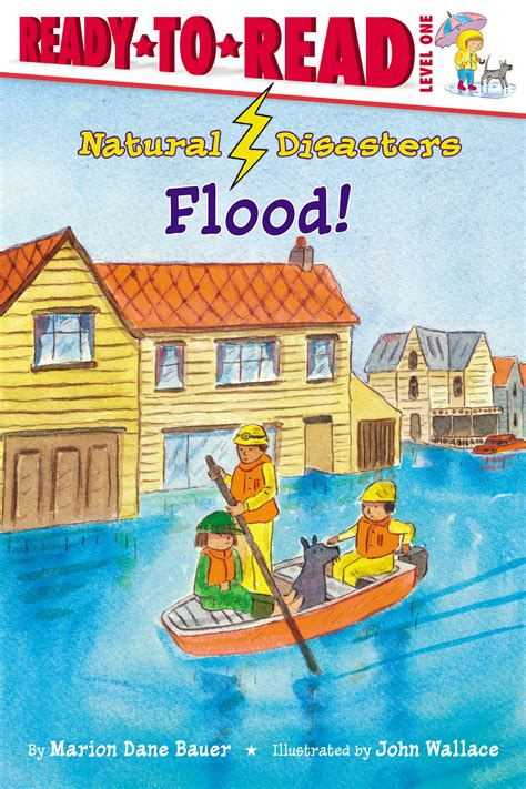 disaster i cover them i am one books flood book by marion dane bauer wallace