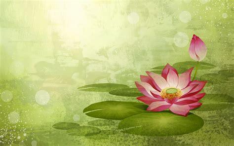 imagenes flores de otoño fondo de pantalla de colores sint 233 ticos flor 20