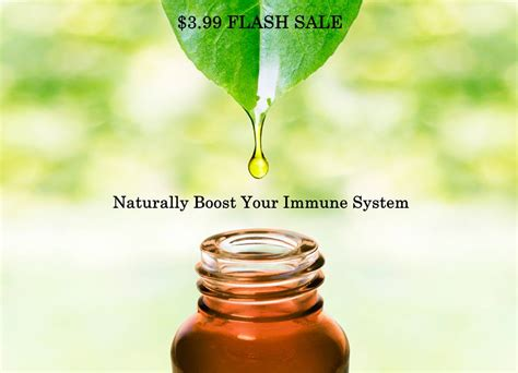 immune boost blend barefut essential oils living