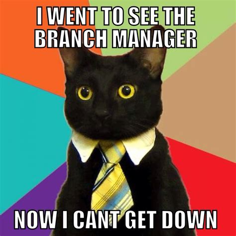 Business Meme - business cat meme can t get down off the business ladder