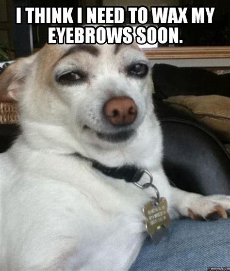Waxing Meme - i think i need to wax my eyebrows soon memes com