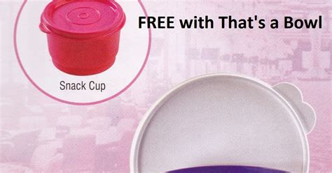 Tumbler Dubbtogo Dubblin Prism 450ml tupperware india tupperware international products