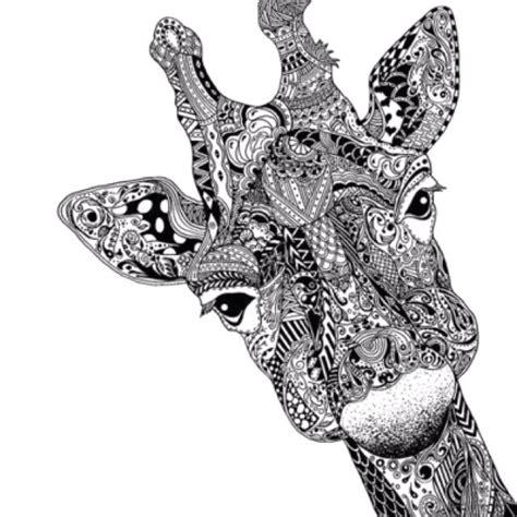 Zentangle Pattern Giraffe   zentangle like giraffe art art photography pinterest