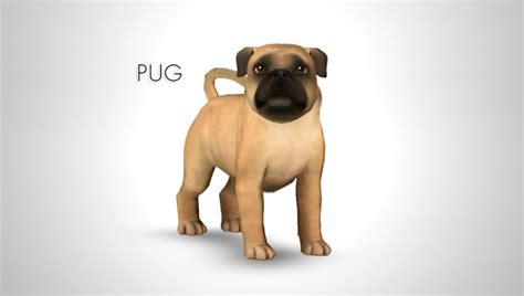 sims 3 pets pug improved pug by morganabananasims sims 3 downloads cc caboodle sims 3 pets