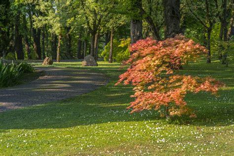 parco giardino parco giardino sigurt 224 mondoparchi tanto divertimento