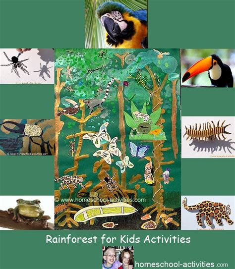 let s learn about jungle animals letã s homeschool science rainforest for activities