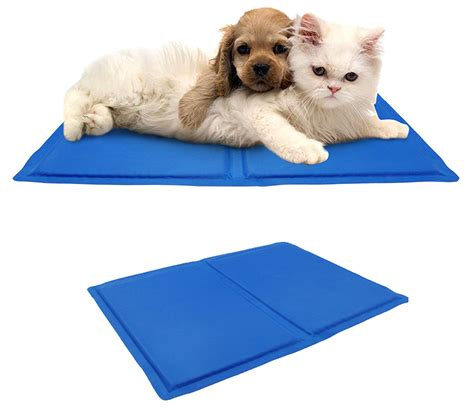 heat l for cats amazoncom pet support systems orthopedic gel memory foam