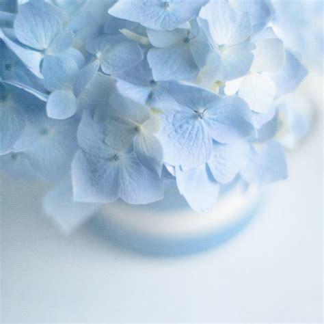 17 best ideas about light blue on pinterest pastel blue