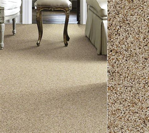 if querystring shaw carpet carpet colors and