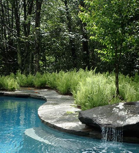 natural backyard pool garden idea easy idea
