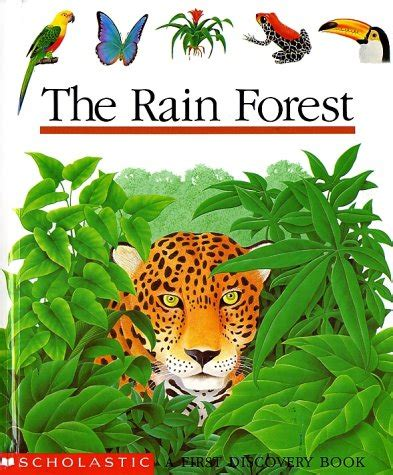 the of the forest books the forest discovery book by scholastic books