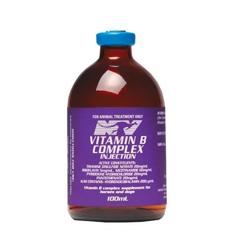 vitamin b for dogs nv vitamin b complex injection 100ml