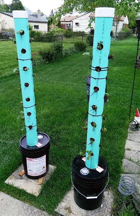 Vertical Garden Pvc Design Want To Build Your Own Hydroponic Strawberry Tower Learn