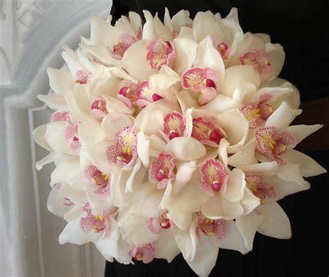 Ilga Ziegler Wikipedia Black Orchid Oshawa