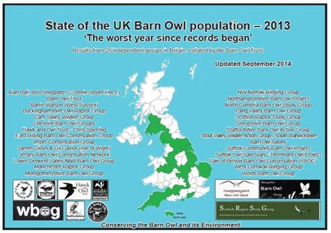 Population Report Writing by Current Uk Barn Owl Population The Barn Owl Trust