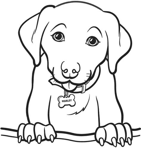 Easy Printable Animal Coloring Pages | easy animal coloring pages for kids coloring home