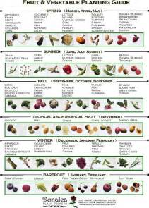garden vegetables list when to plant vegetables for our soon to be new