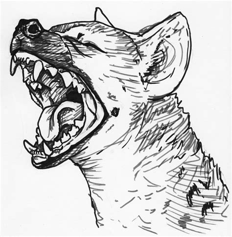 hyena tattoo 14 awesome hyena designs