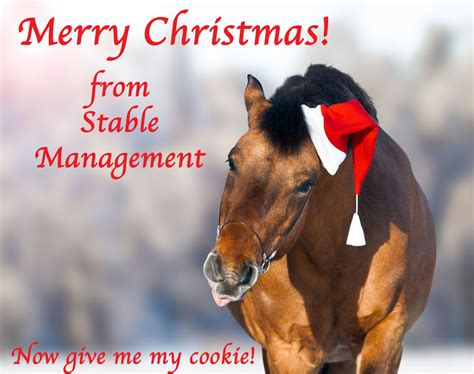 merry christmas  stable management   resource  horse farms stables  riding