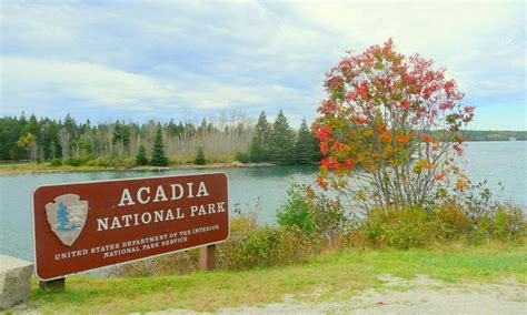 Acadia National Park Cabins Pet Friendly by Schoodic Peninsula Maine Alltrips