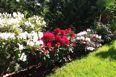offerte panorama fiori i fiori la frutta al garni sunnwies a marlengo in alto