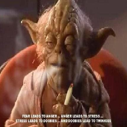 star wars yoda quotes  drugs quotesgram