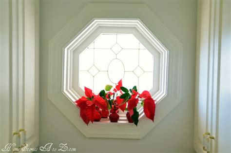 decorating  poinsettias poinsettia home stories