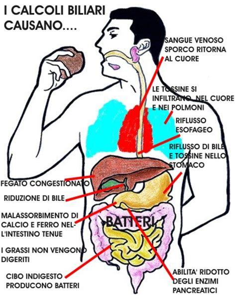 il fegato porta dolore wow maggio 2014