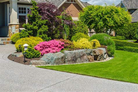 best bushes for front yard 101 front yard garden ideas awesome photos