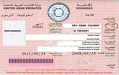 emirates visa dubai visa renewal for dependents visa renewal process for wife