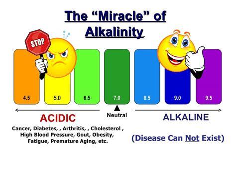 Air Alkali Holo Ph 8 how to prepare alkaline water best herbal health