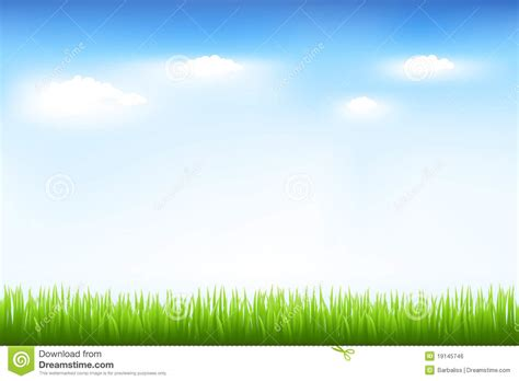 green grass and blue sky royalty free stock image image