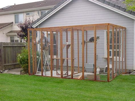 backyard cat 40 best images about outdoor cat enclosure on pinterest cat houses cats and wooden
