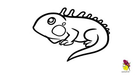 easy lizard coloring pages iguana coloring page simple lizard drawing lizards pages