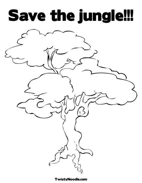 rainforest tree template forest trees coloring page coloring home